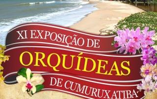 exposicao de orquideas em Cumuruxatiba